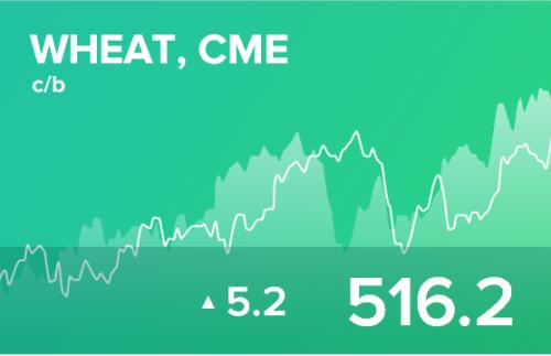 Ежедневный прогноз ценовых колебаний на 6 ноября 2019