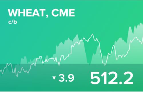 Ежедневный прогноз ценовых колебаний на 8 ноября 2019