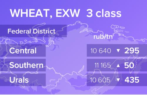 Пшеница. Цены EXW. Россия. Данные на 24.12.2019