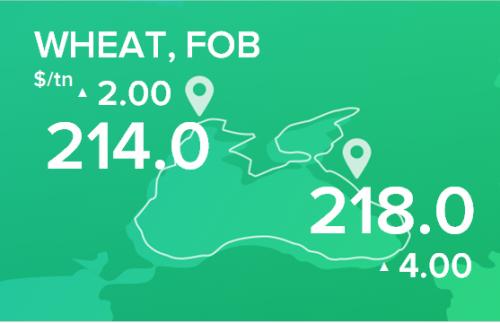 Пшеница. Цены FOB. Данные на 23.12.19