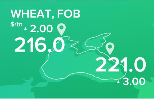 Пшеница. Цены FOB. Данные на 30.12.19