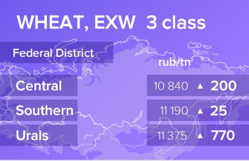 Пшеница. Цены EXW в России на 20 января 2020