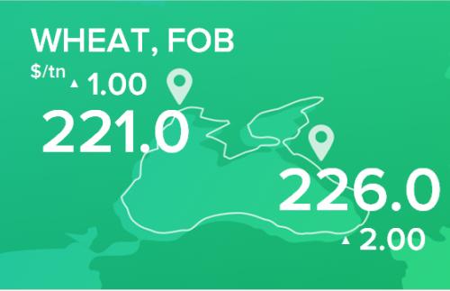 Пшеница. Обзор цен FOB на 20 января 2020