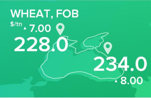 Пшеница. Обзор цен FOB на 27 января 2020