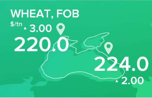 Пшеница. Цены FOB. Данные на 13.01.20