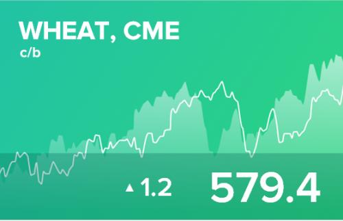 Прогноз биржевых цен на 24 января 2020