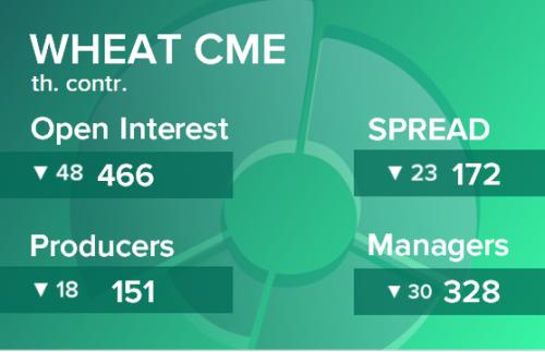 Пшеница. Открытый интерес на 29 февраля 2020