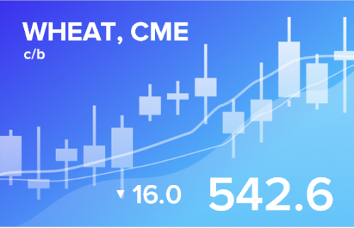 Прогноз биржевых цен с 17 по 21 февраля 2020
