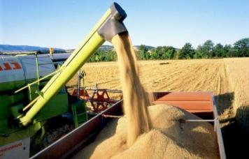 EXP.IDK.RU. Российские сельхозпроизводители наращивают прибыль из-за выросшей цены на зерно (Видео)