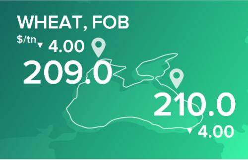 Пшеница. Цены в портах на 16 марта 2020