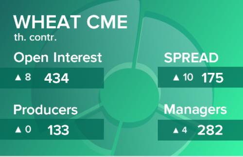 Пшеница. Открытый интерес на 14 марта 2020