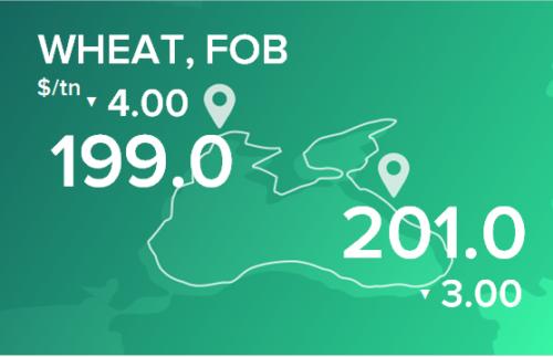 Пшеница. Цены в портах на 29 июня 2020