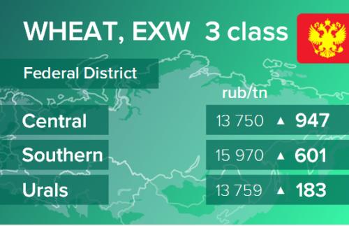 Пшеница. Цены EXW в России на 28 октября 2020