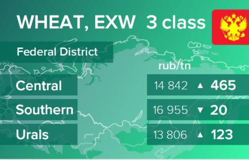 Пшеница. Цены EXW в России на 25 ноября 2020