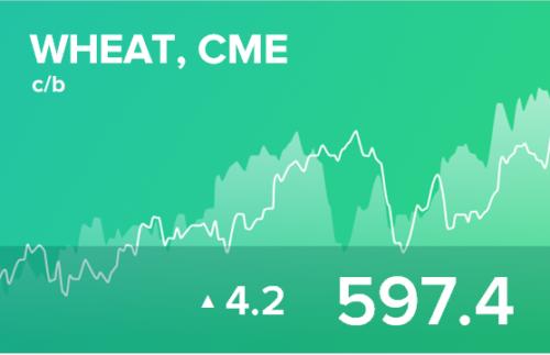 Прогноз биржевых цен на 19 ноября 2020