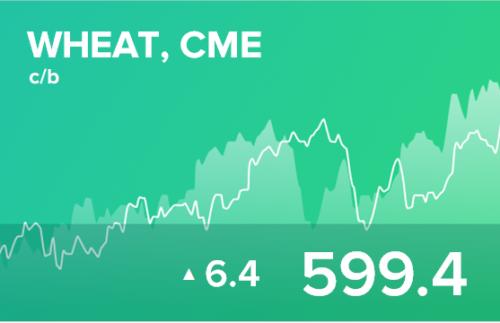 Прогноз биржевых цен на 24 ноября 2020