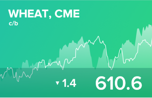 Прогноз биржевых цен на 6 ноября 2020