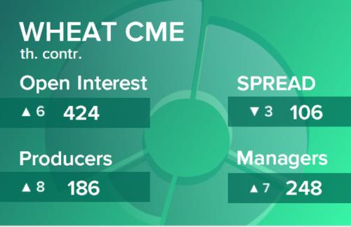 Пшеница. Открытый интерес на 16 января 2021