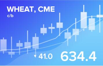 EXP.IDK.RU. Прогноз биржевых цен с 25 по 29 января