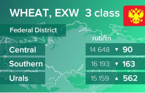 Пшеница. Цены EXW в России на 3 февраля 2021
