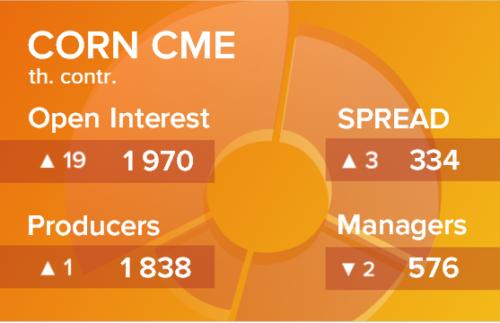 Кукуруза. Открытый интерес на 13 февраля 2021
