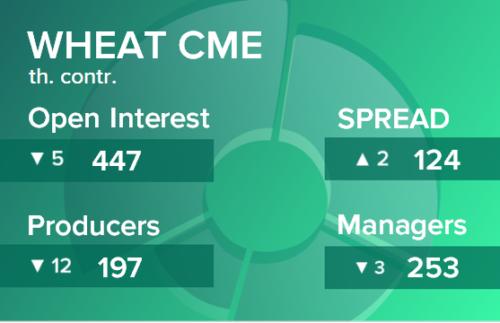 Пшеница. Открытый интерес на 6 февраля 2021