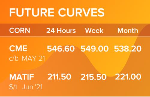 Кукуруза. Фьючерсные кривые на 29 марта 2021