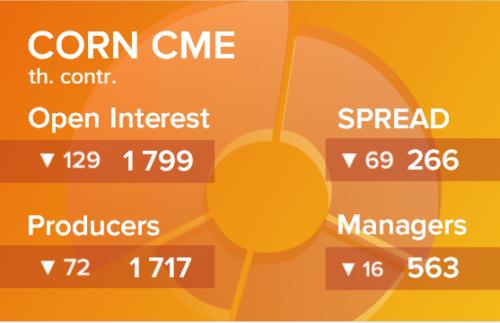 Кукуруза. Открытый интерес на 6 марта 2021