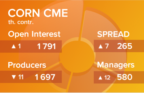 Кукуруза. Открытый интерес на 20 марта 2021