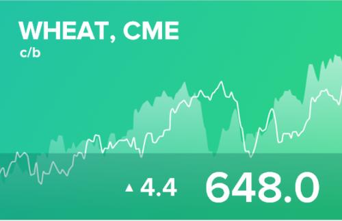 Прогноз биржевых цен на 17 марта 2021