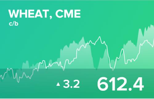Прогноз биржевых цен на 29 марта 2021