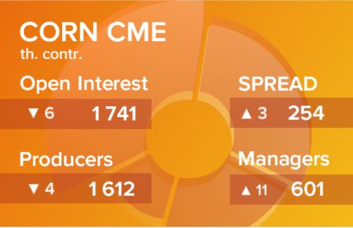 Кукуруза. Открытый интерес на 3 апреля 2021