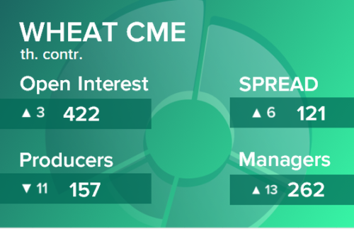 Пшеница. Открытый интерес на 3 апреля 2021