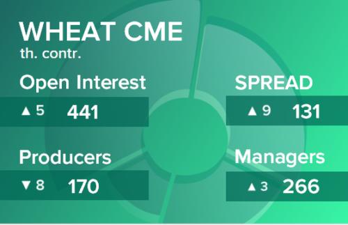 Пшеница. Открытый интерес на 24 апреля 2021