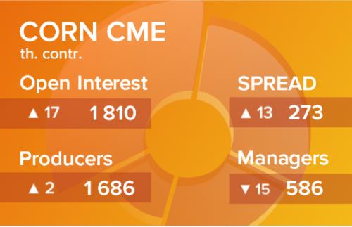 Кукуруза. Открытый интерес на 24 апреля 2021